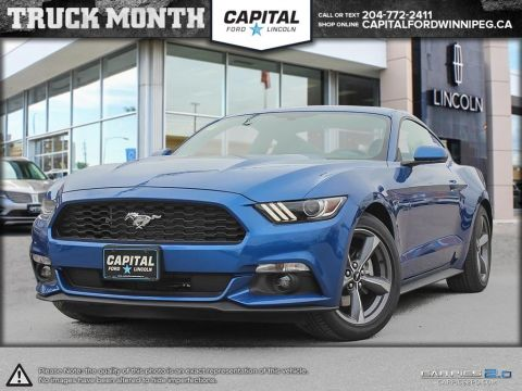 New 2017 Ford Mustang V6 RWD 2 Door Coupe </br> Stock: P1294