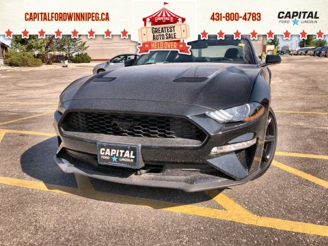 New 2019 Ford Mustang EcoBoost Premium*Black Accent Package*Automatic*Bluetooth*Navigation